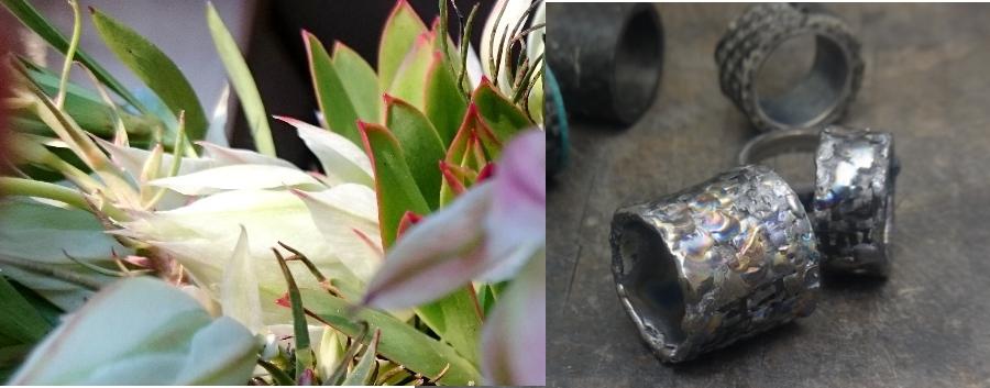 ジルコニウム、タンタルの指輪